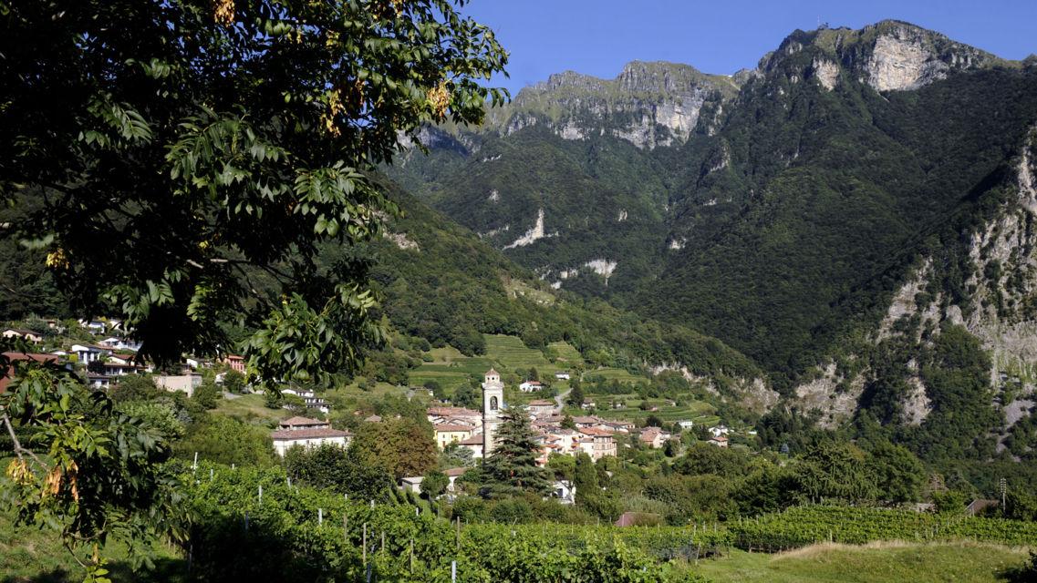 Panorama-Rovio-547-TW-Slideshow.jpg