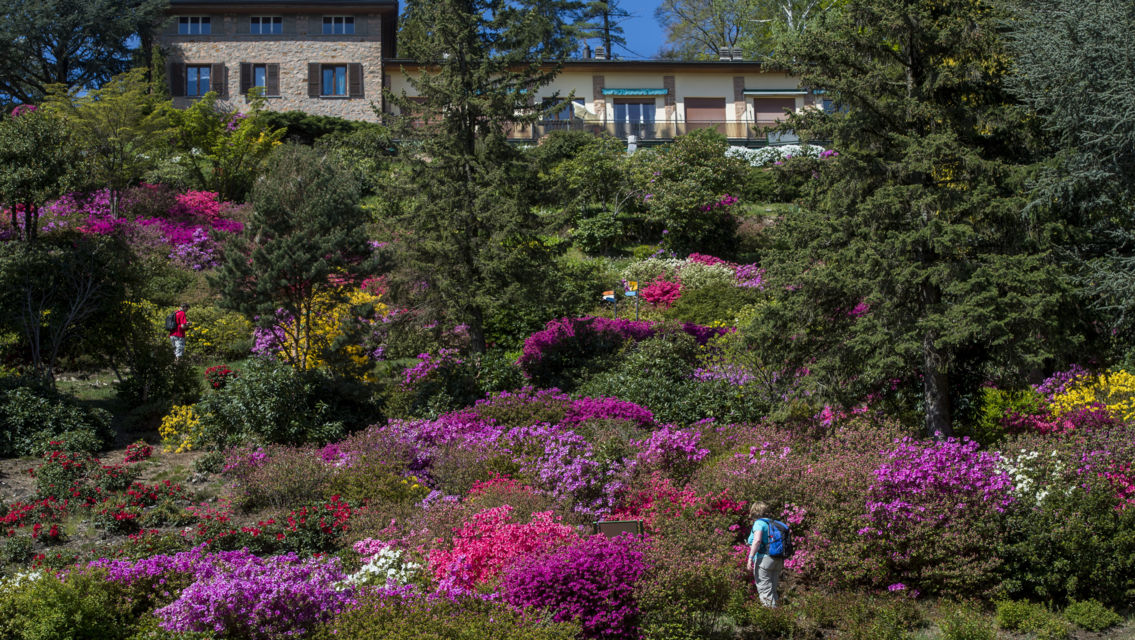 Parco-San-Grato-14938-TW-Slideshow.jpg