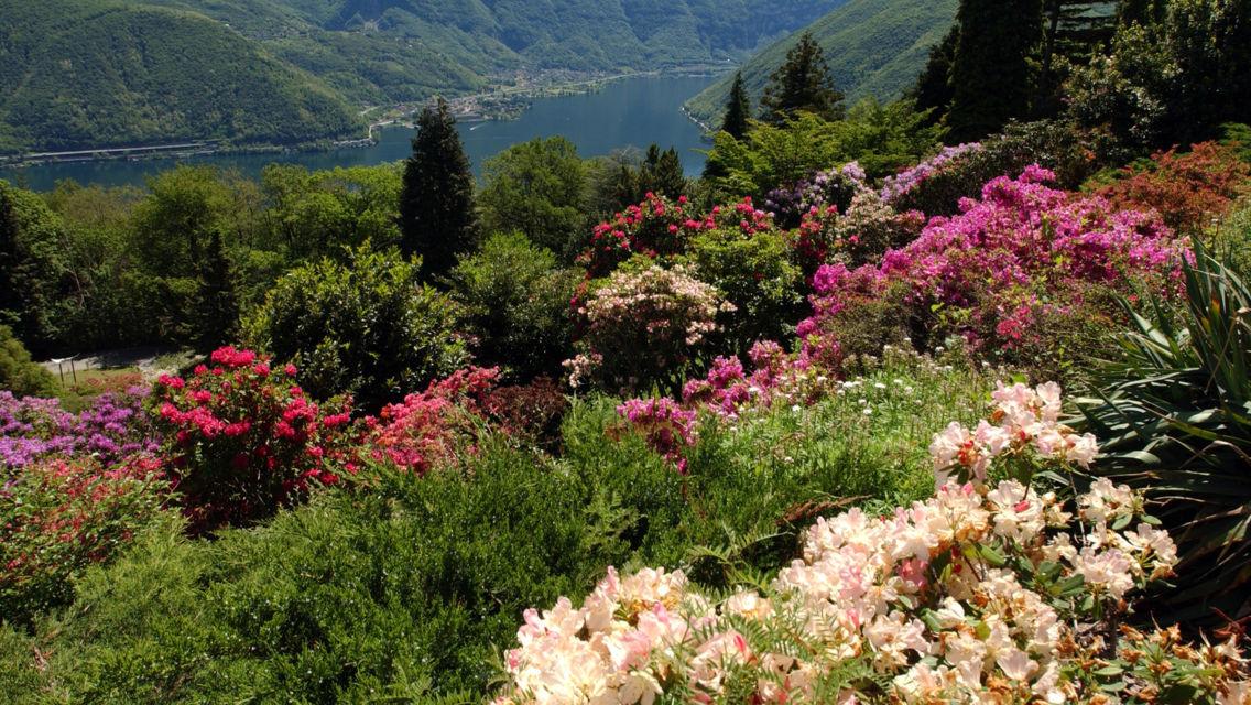 Parco-San-Grato-parco-fiorito-6595-TW-Slideshow.jpg