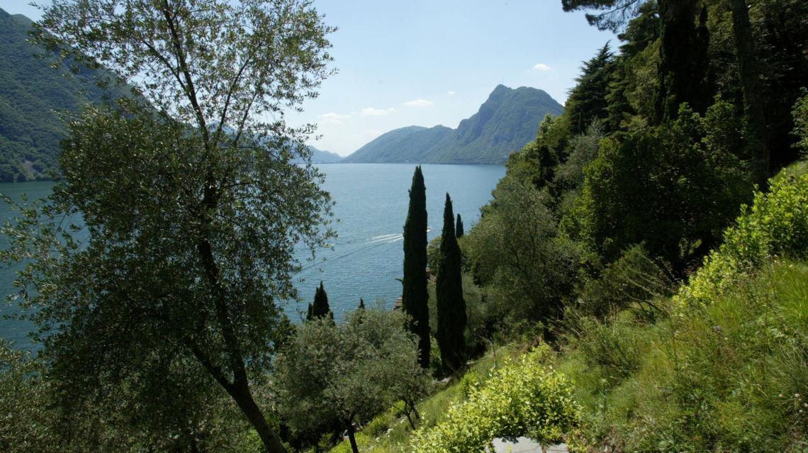 Parco-degli-Ulivi-11386-TW-Slideshow.jpg