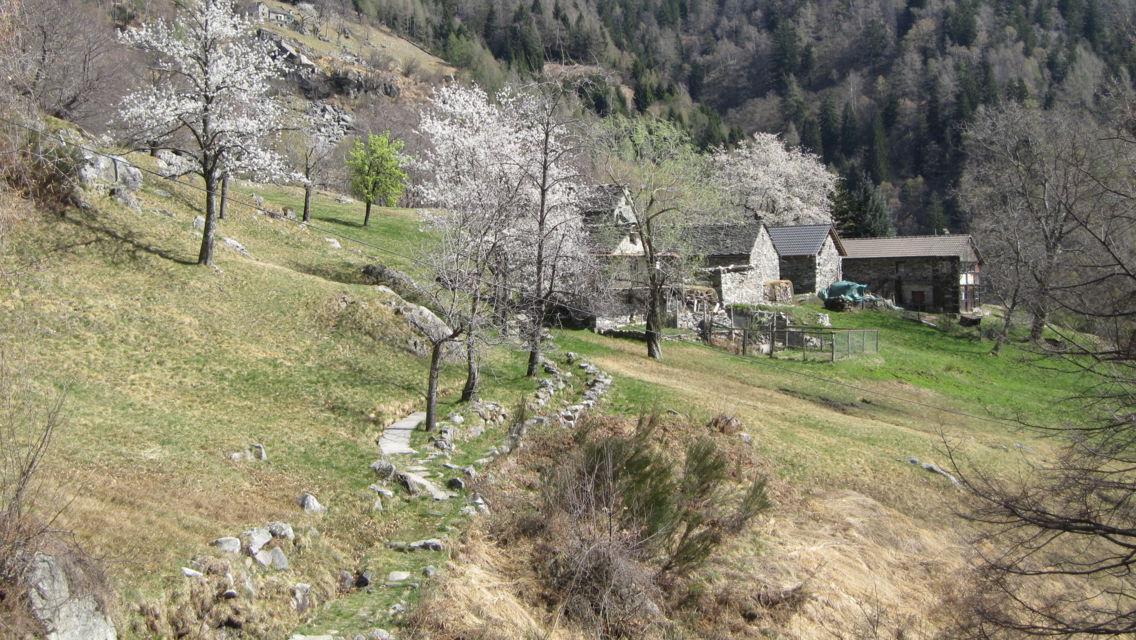 Sentiero-del-signor-Geiser-1806-TW-Slideshow.jpg