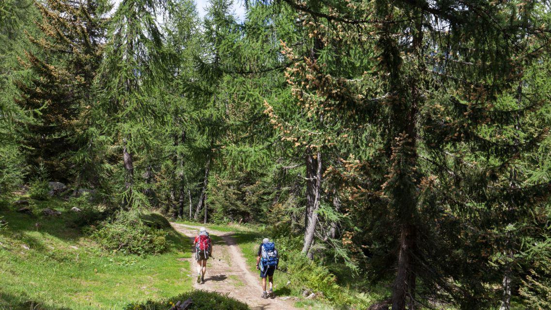 Strada-degli-Alpi-15978-TW-Slideshow.jpg