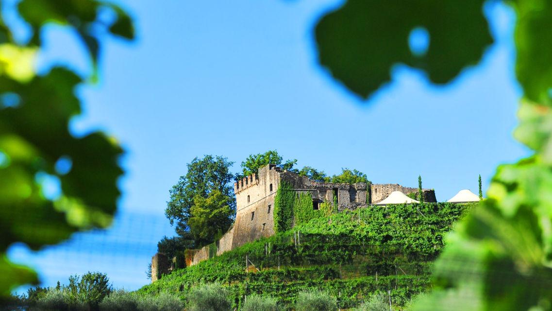 Tenuta-Castello-di-Morcote-1391-TW-Slideshow.jpg