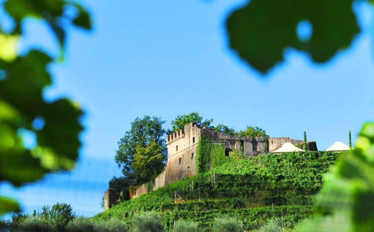 Tenuta-Castello-di-Morcote-1392-TW-Interna.jpg