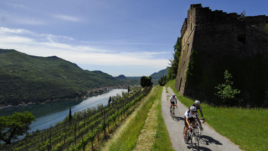 Tenuta-Castello-di-Morcote-967-TW-Slideshow.jpg