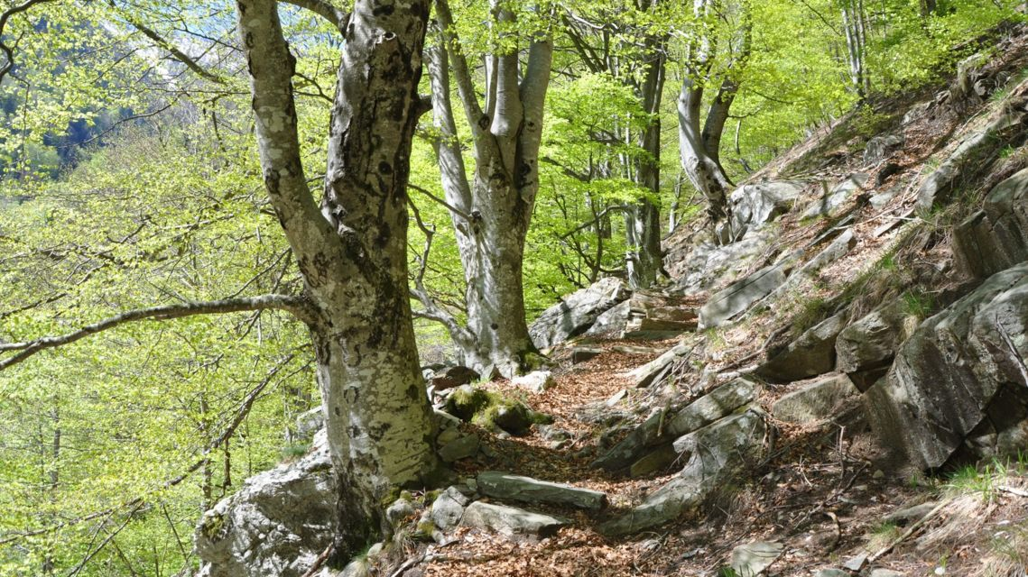 Valle-di-Lodano-26848-TW-Slideshow.jpg