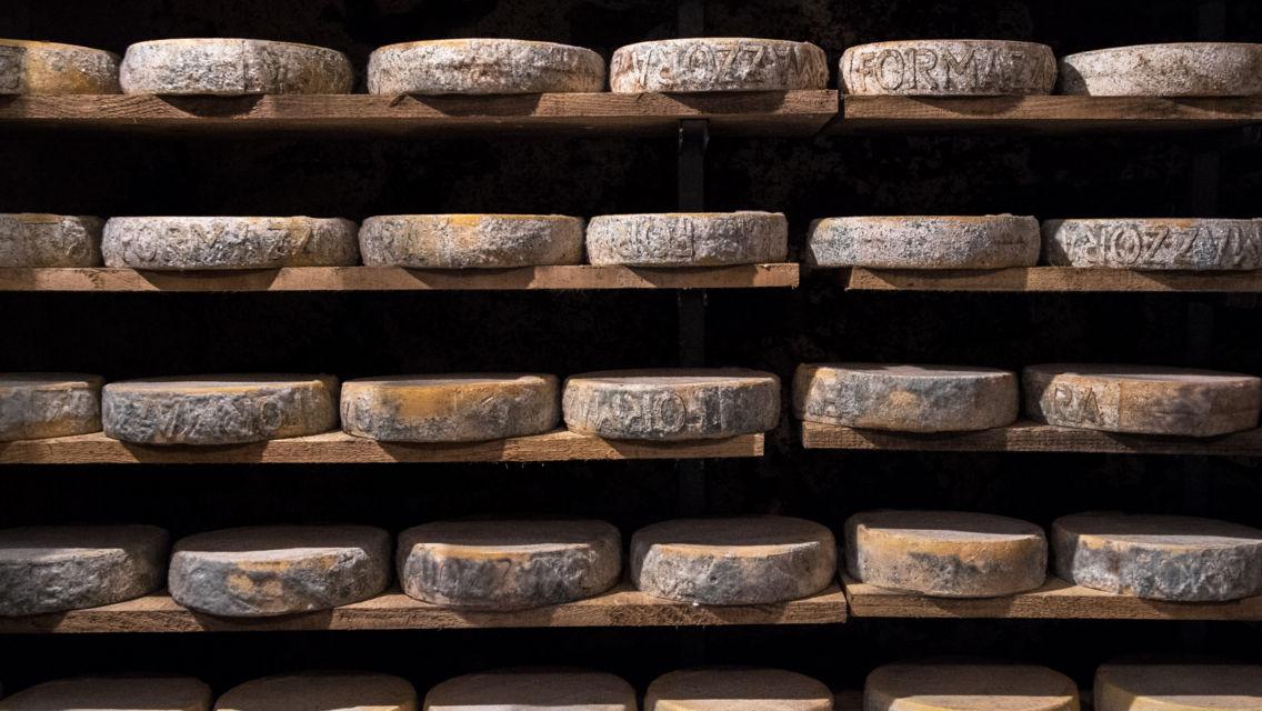 formaggio-19549-TW-Slideshow.jpg