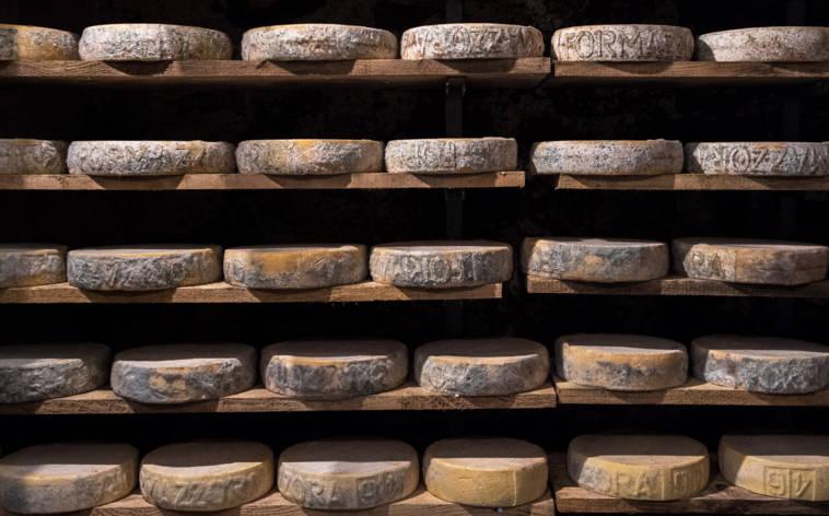 Tessiner Käsereien geben milchige Einblicke