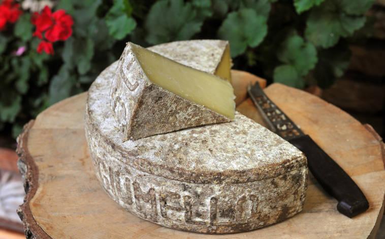 formaggio-dell-alpe-6893-TW-Interna.jpg