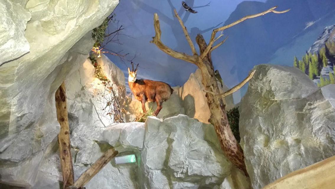 grotta-dei-cristalli-26406-TW-Slideshow.jpg