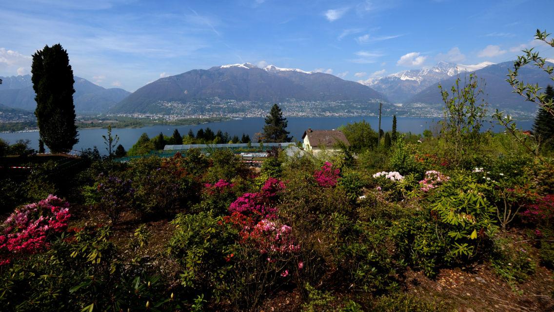 parco-botanico-Gambarogno-10786-TW-Slideshow.jpg