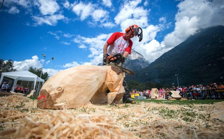 Wettbewerb nicht nur für Holzfäller