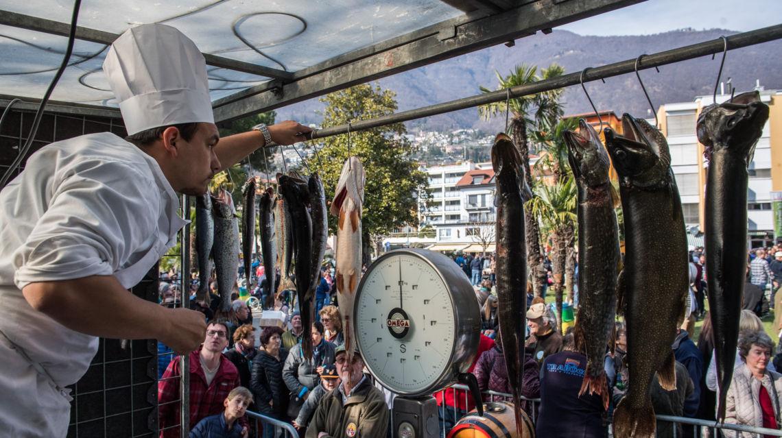 sagra-del-pesce-23122-TW-Slideshow.jpg