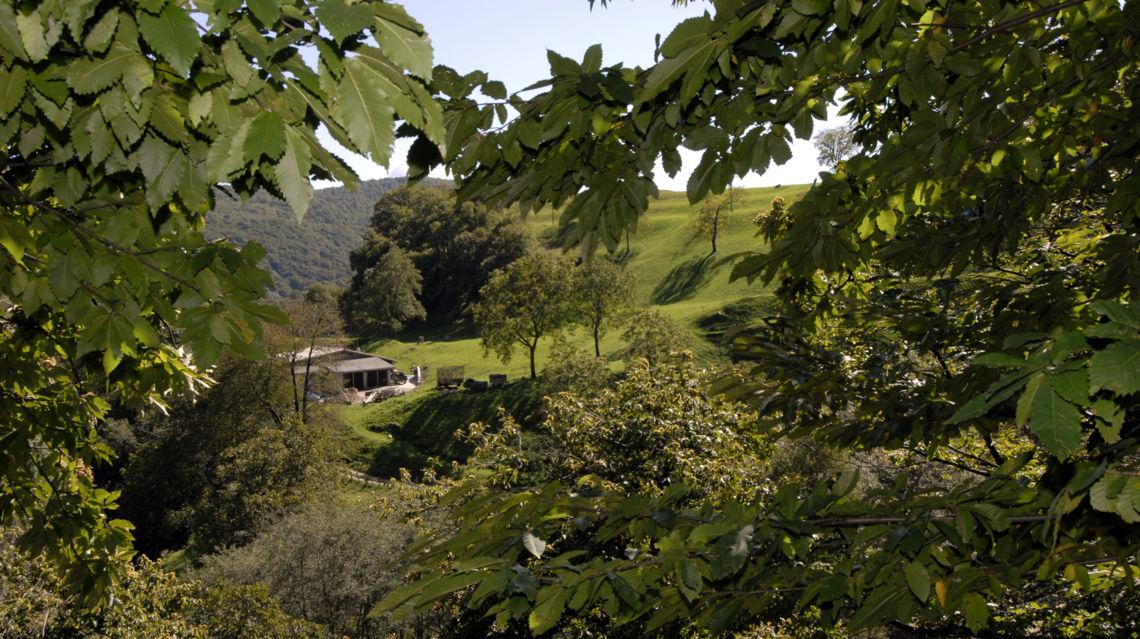 sentiero-del-castagno-1720-TW-Slideshow.jpg