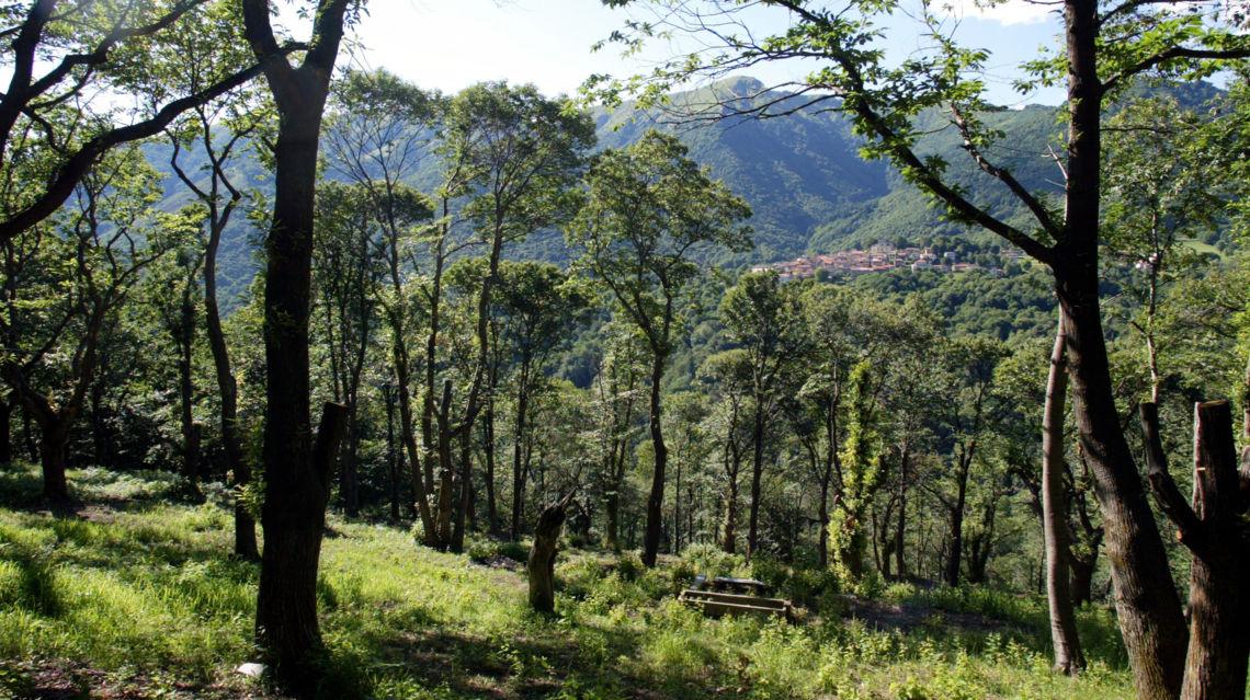 sentiero-del-castagno-8305-TW-Slideshow.jpg