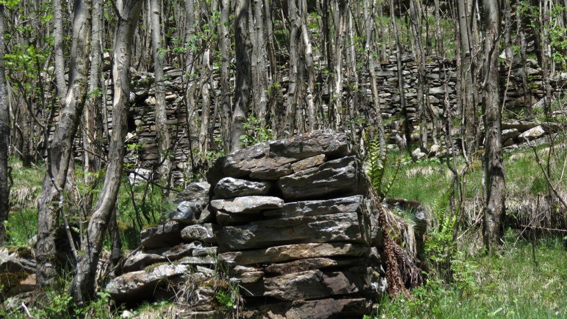 sito-archeologico-La-Scatta-24664-TW-Slideshow.jpg